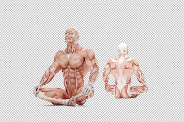 Atleta in meditazione posa illustrazione anatomica