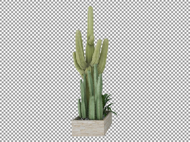 Bella pianta in 3d rendering isolato trasparente
