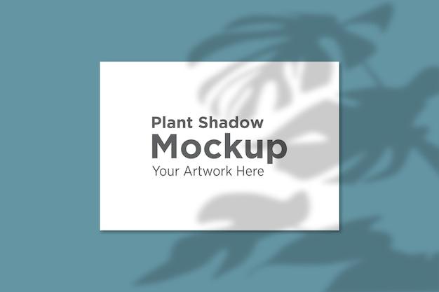 Bella pianta ombra su carta mockup Psd Premium