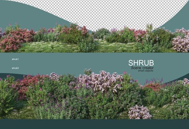 Bellissimo piccolo giardino fiorito