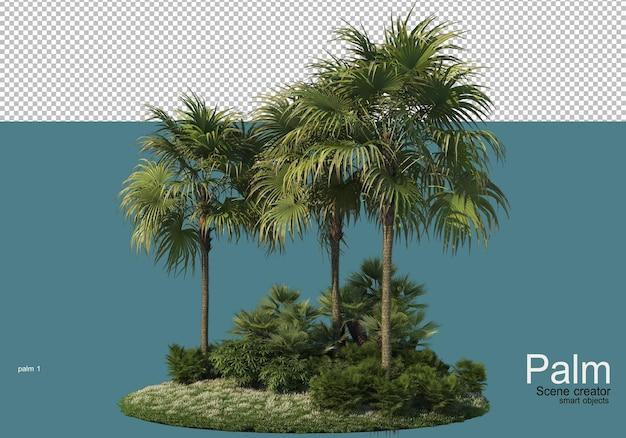 Bello piccolo rendering di piantagioni di palme