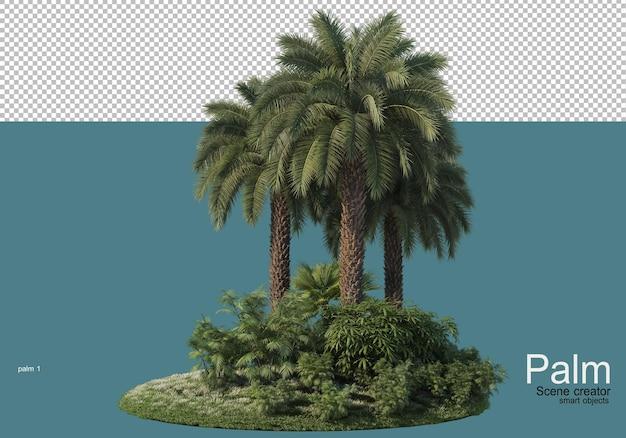 Bello piccolo rendering di piantagioni di palme Psd Premium