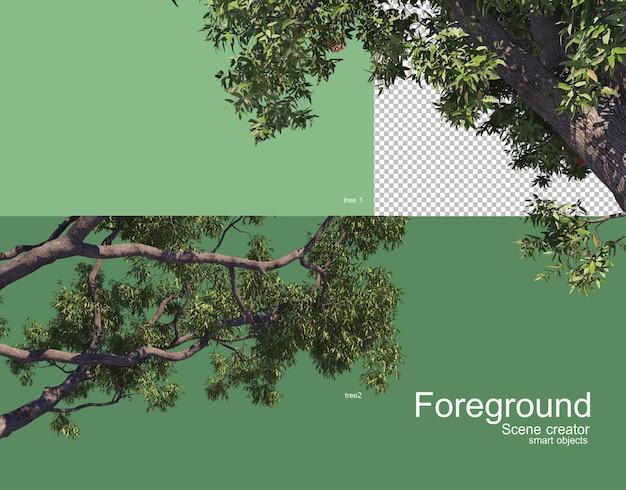 Rendering in primo piano di bei rami di albero