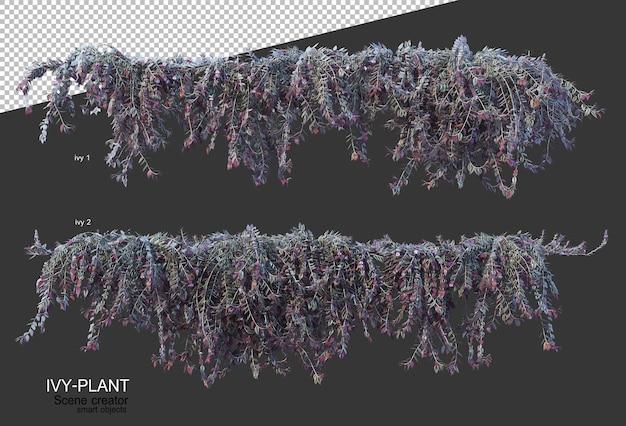 Bella varietà di fiori nel rendering 3d