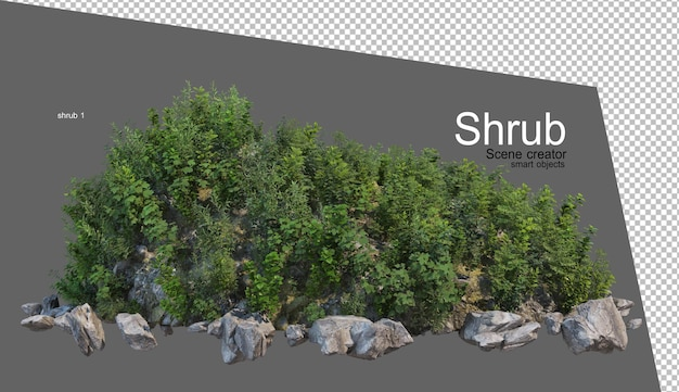 Bella varietà di rendering di arbusti