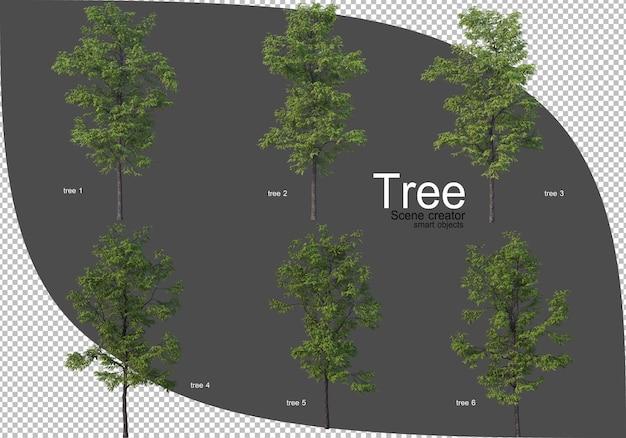 Bella varietà di rendering di alberi