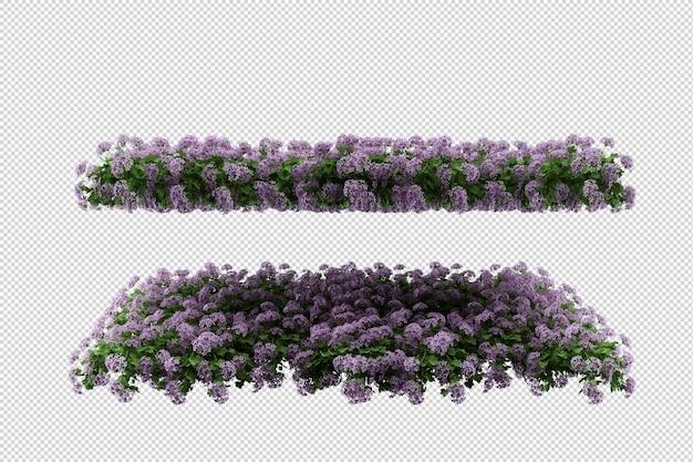 Bellissimi vari tipi di fiori in rendering 3d isolati