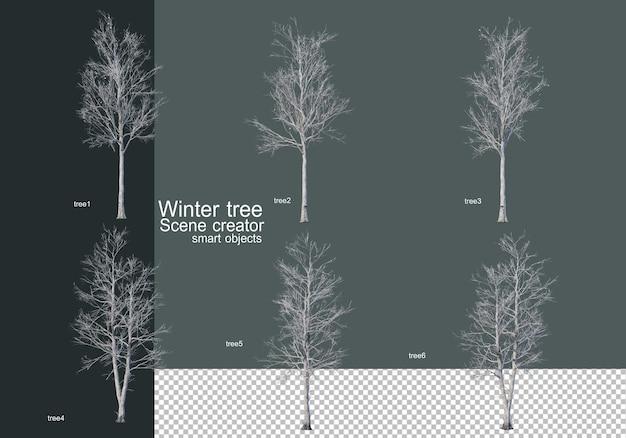 Bellissimi vari alberi invernali isolati Psd Premium