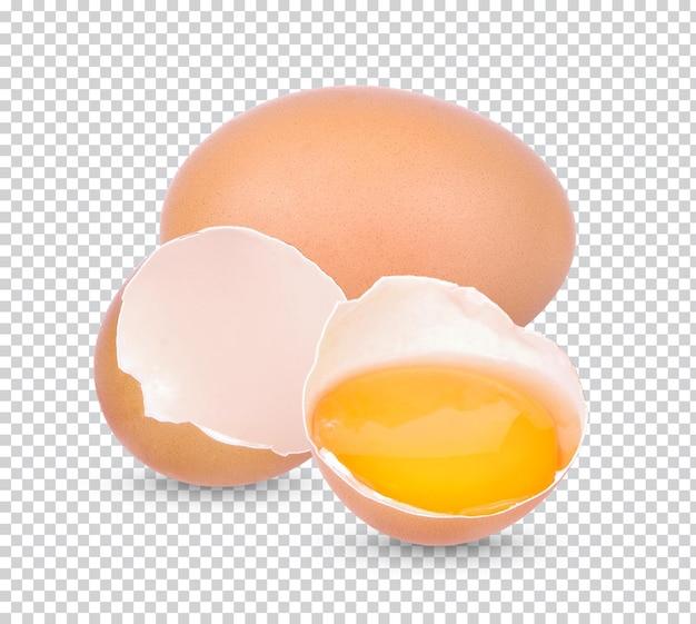 Uovo rotto di pollo isolato