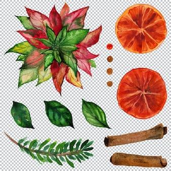Fascio floreale natalizio con stella di natale e birra chiara e arance e cannella strato di elemento acquerello