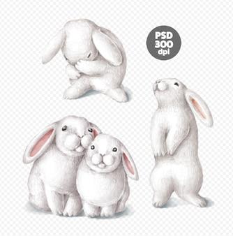 Simpatici coniglietti disegnati a mano illustrazioni digitali