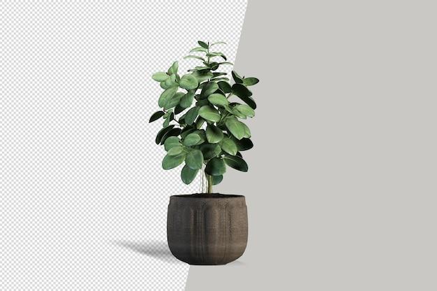 Design leaf 3d interior design scene monstera render creator rendering 3d per interni creatore di scene