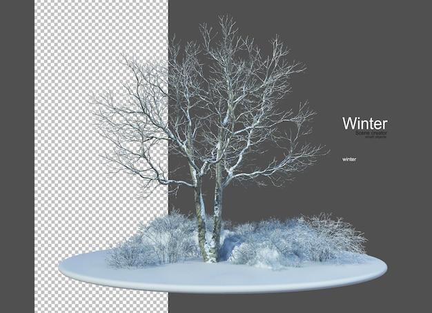 Diversi tipi di alberi in inverno