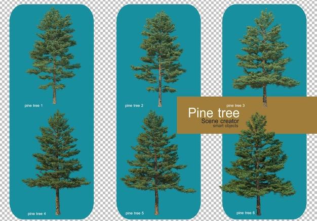 Mostra diversi modelli di alberi di pino