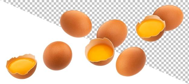 Uova di gallina che cadono isolate