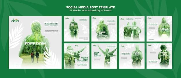 Modello di post instagram giorno delle foreste con foto