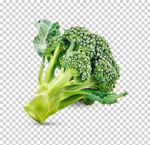 Isolato di broccoli freschi