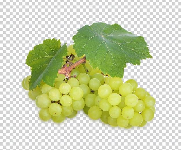 Uva verde fresca isolata