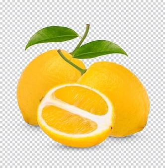 Limone fresco con foglie isolate psd premium
