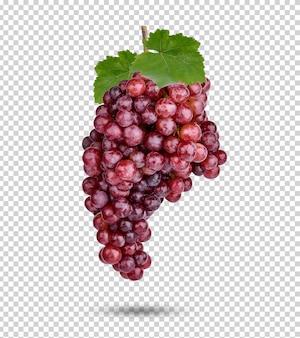 Uva rossa fresca con foglie isolate psd premium