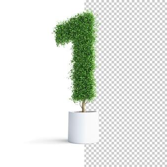 Albero verde numero 1
