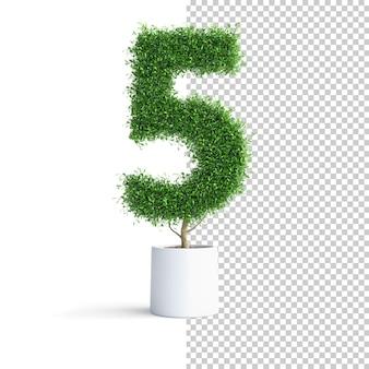 Albero verde numero 5
