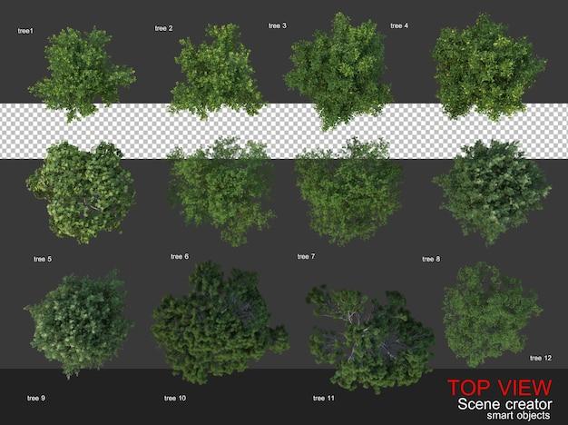 Alberi e arbusti della telecamera dall'alto