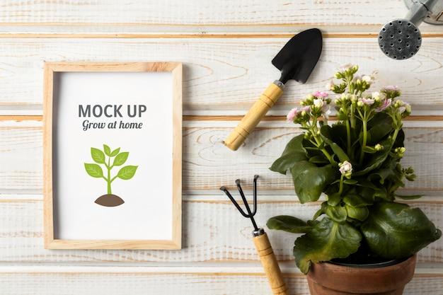 Disposizione di giardinaggio domestico con mock-up di cornice