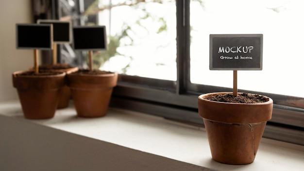 Disposizione di giardinaggio domestico con mock-up di cornici di piante