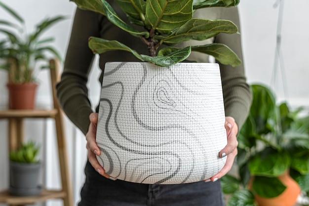Mockup di vaso di piante d'appartamento psd con fichi di violino portato da una donna