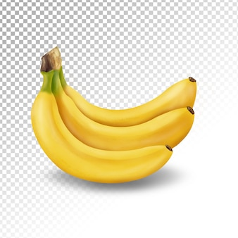 Illustrazione della banana trasparente isolata