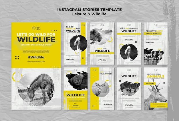Raccolta di storie di instagram per la protezione della fauna selvatica e dell'ambiente