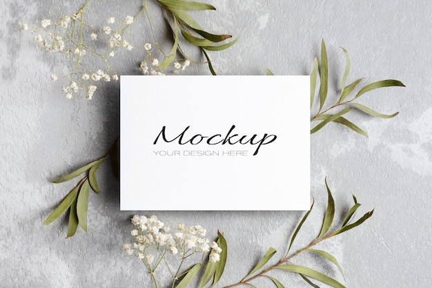 Modello di invito o biglietto di auguri con ramoscelli di eucalipto e gypsophila
