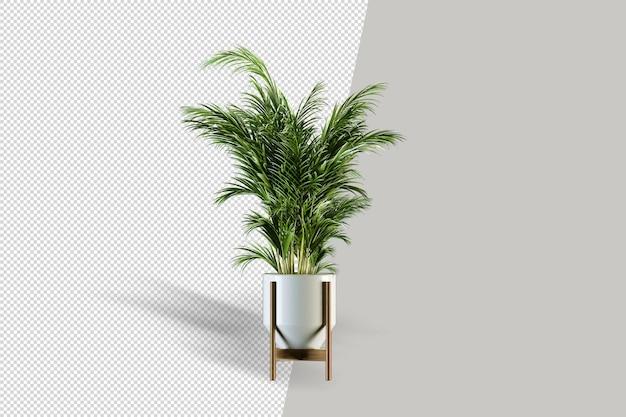 Vaso per piante isolato in rendering 3d isolato