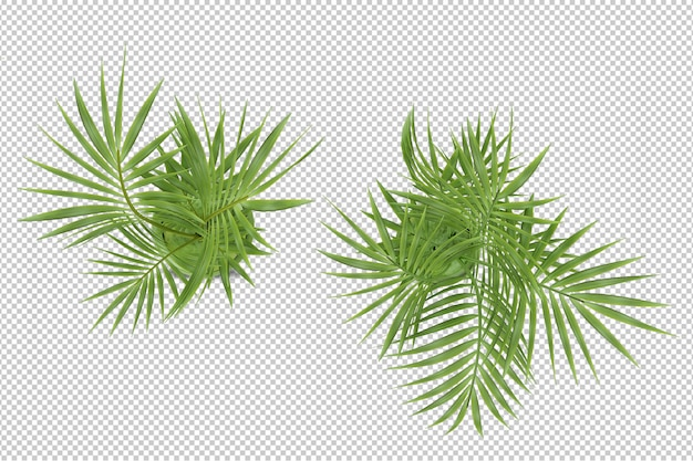 Pianta isometrica nella rappresentazione 3d