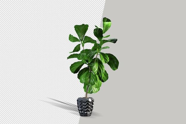 Rendering 3d isometrico della pianta