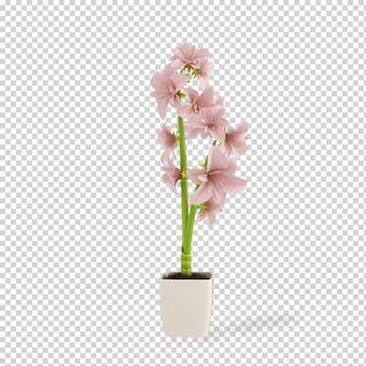 Pianta isometrica nella rappresentazione 3d del vaso