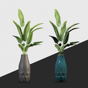Piante isometriche in vaso nella rappresentazione 3d