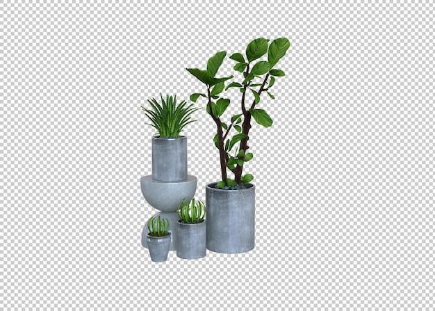 Grandi piante verdi da interno piante in vaso