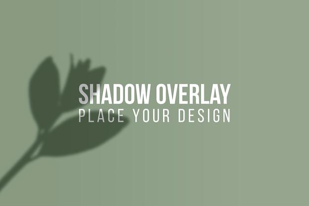 Lascia la sovrapposizione delle ombre e l'effetto di sovrapposizione delle ombre delle finestre concetto trasparente