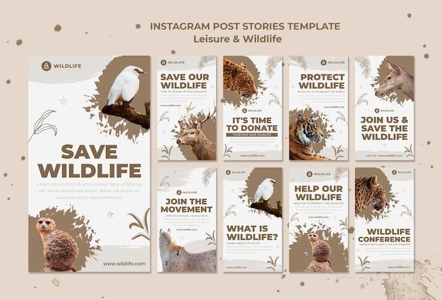Storie di instagram per il tempo libero e la fauna selvatica