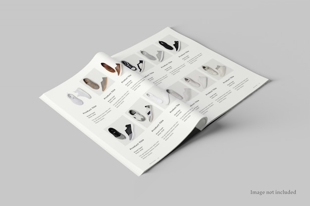 Vista prospettica del mockup di diffusione della rivista