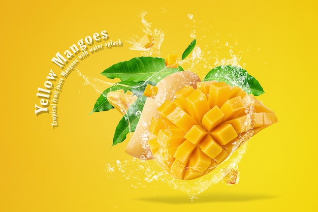 Frutta del mango con i cubi e le fette del mango isolati su fondo bianco