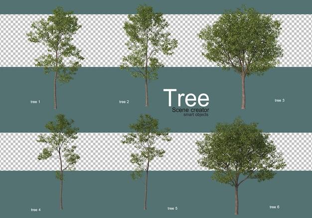 Molti diversi tipi di alberi