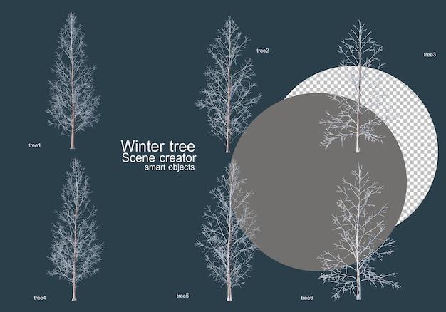 Molti tipi di alberi in inverno Psd Premium