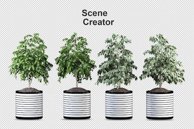 Pianta di monstera in vaso nel rendering 3d