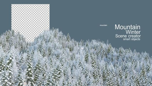 Montagne con pini in inverno