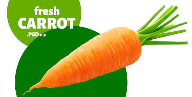 Una carota isolata su bianco