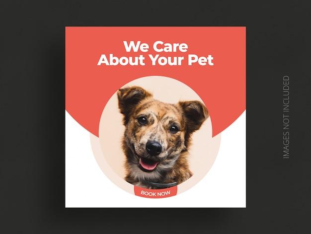 Cura dell'animale domestico post social media o modello di volantino quadrato banner web