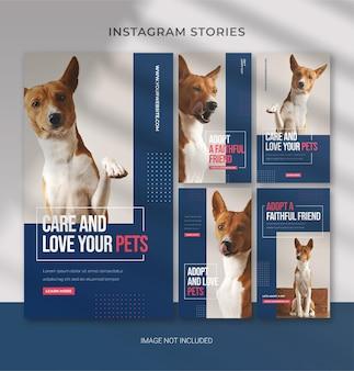 Modello per la cura degli animali domestici per storie di instagram